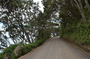 Road Port Jackson