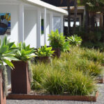 Front Yard of the best rated B&B in the south pacific - Wairua Lodge