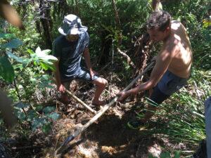 Planting a Kauri at Wairua Lodge
