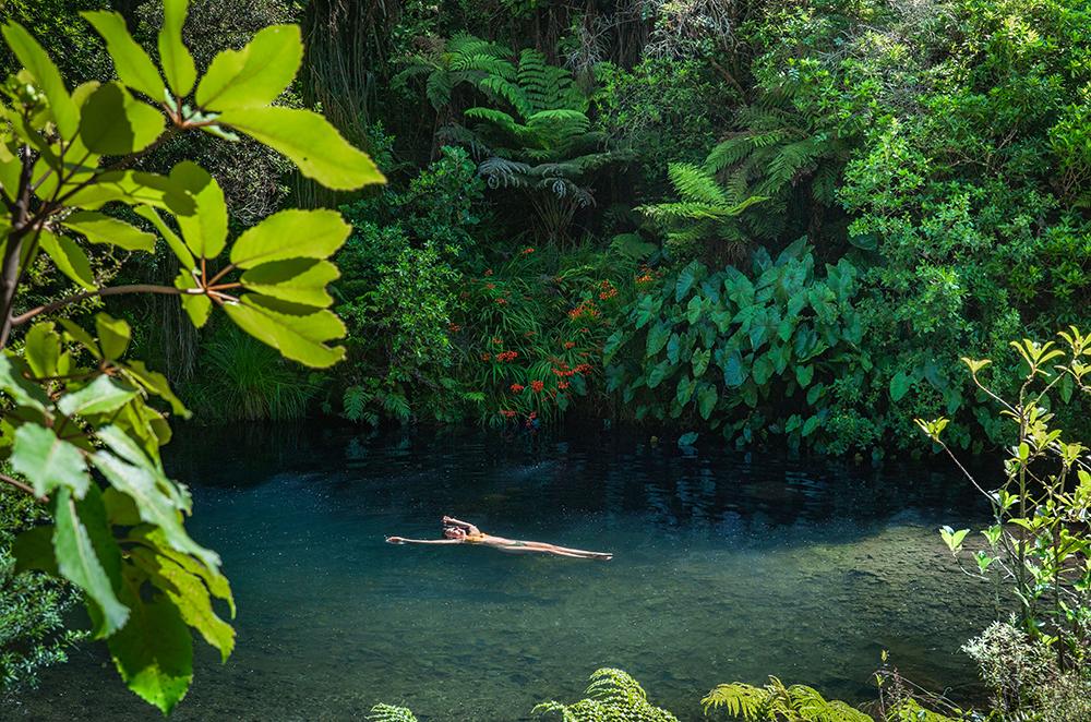 Floating at Wonderful Jungle / Rainforest Riverbed at Wairua Lodge, Whitianga, NZ