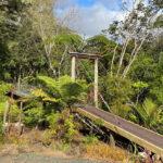 The renovated bridge at Wairua Lodge